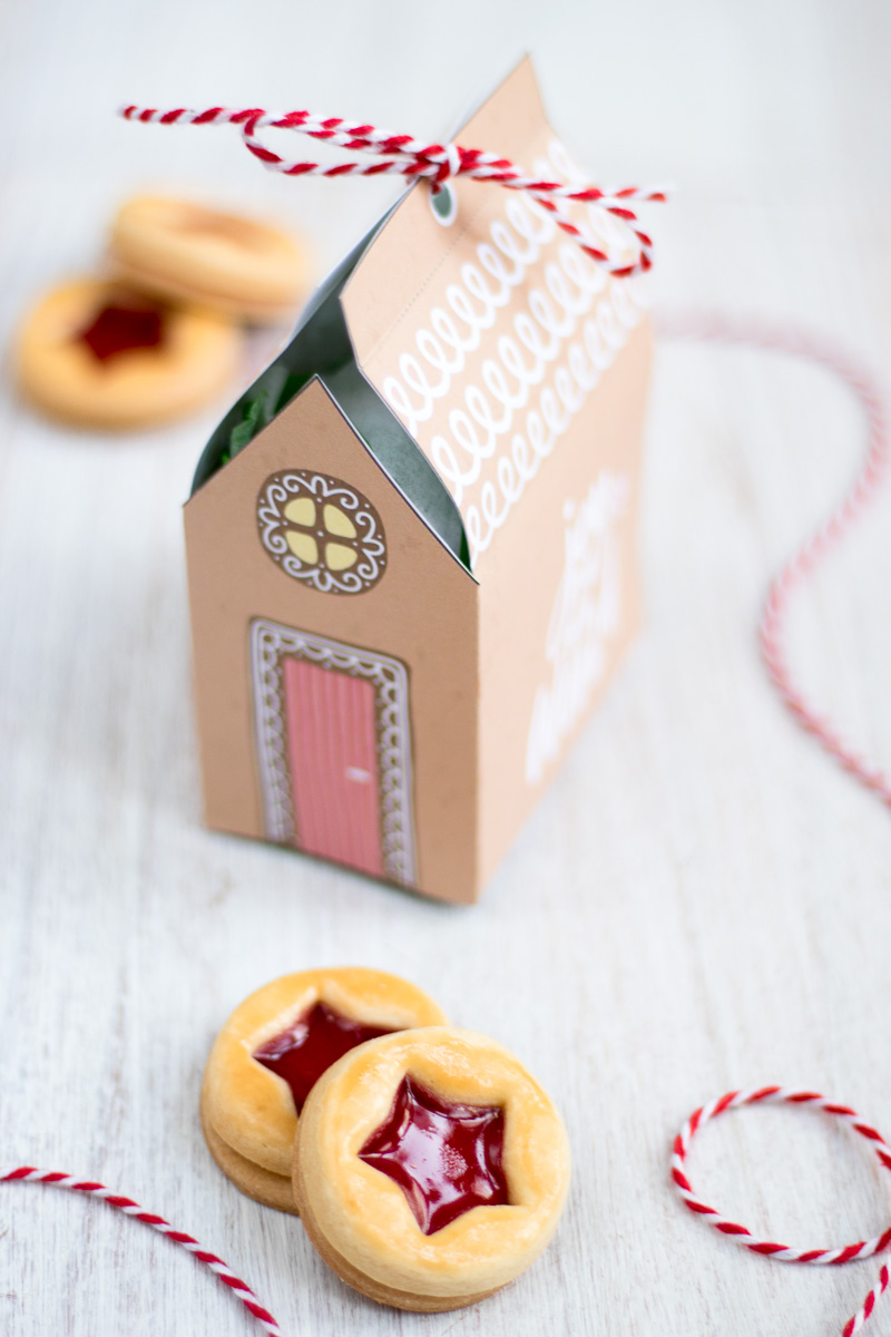 gingerbread house cookie box