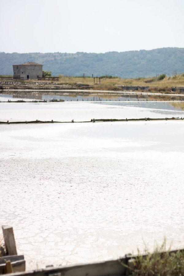 Il Parco Naturale delle Saline di Sicciole: una giornata alla scoperta del sale
