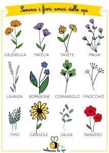 Salviamo le api: fiori che piacciono alle api